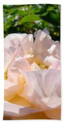 Rose Art Prints Canvas Sunlit Pink Rose Garden Baslee Troutman Beach Towel