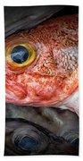 Rose Fish Beach Towel