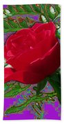 Rose For You Beach Towel