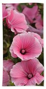 Rose Mallow Flowers Beach Towel
