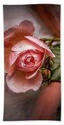 Rose On Paint #g5 Beach Sheet