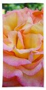 Rose Pink Yellow Rose Flower 2 Rose Garden Giclee Prints Baslee Troutman Beach Towel