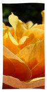 Rose Sunlit Orange Rose Garden 7 Rose Giclee Art Prints Baslee Troutman Beach Towel