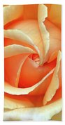Rose Unfolding Beach Towel