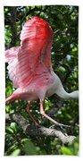 Roseate Spoonbill In Flight Beach Towel
