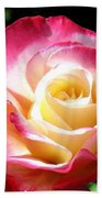 Roses 7 Beach Towel