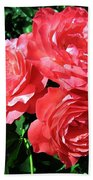 Roses 9 Beach Towel