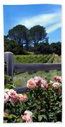 Roses At Rusack Vineyards Beach Towel