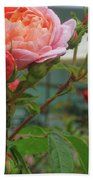 Roses Everywhere Beach Sheet