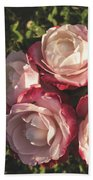 Roses In A Vase,on The Grass Beach Towel