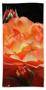 Roses Orange Rose Flowers Rose Garden Art Baslee Troutman Beach Towel
