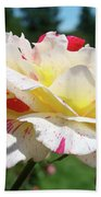 Roses White Pink Yellow Rose Flowers 3 Rose Garden Art Baslee Troutman Beach Towel