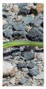 Rough Green Snake Beach Towel