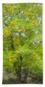 Rowan Beach Towel