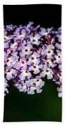 Rows And Flows Of Angel Flowers Beach Towel