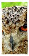 Royal Owl Beach Towel