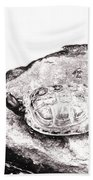 Rubbernecking Pond Turtle Beach Towel