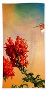 Rufous Dream Beach Towel