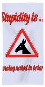 Running Bigstock Donkey 171252860 Beach Towel