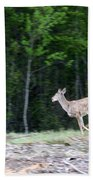 Running Deer Beach Towel