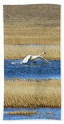 Running On Water Beach Towel