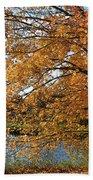 Rural Autumn Country Beauty Beach Towel