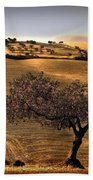 Rural Spain View Beach Towel