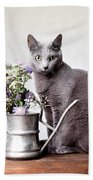 Russian Blue 02 Beach Towel