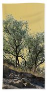 Russian Olive Beach Towel
