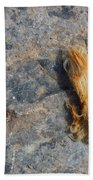 Rust In The Dust Beach Towel