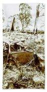 Rustic Rural Decay Beach Sheet