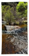 Sabino Creek Beach Towel