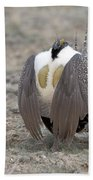 Sage Grouse Beach Towel
