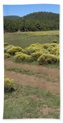 Sage In Bloom - Flagstaff Beach Towel