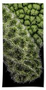 Sage Leaf Beach Towel
