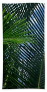 Sago Palm Fronds Beach Towel