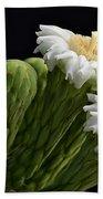 Saguaro Blooms  Beach Towel