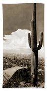 Saguaro Cactus 3 Beach Towel