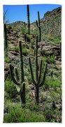 Saguaro Hillside Beach Towel