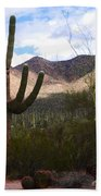 Saguaro National Park Beach Towel