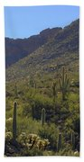 Saguaros And Other Greenery  Beach Towel