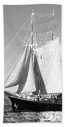 Sailboat - Id 16235-142735-0101 Beach Towel