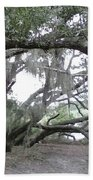 Saint Andrews Park Florida Beach Towel