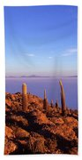 Salar De Uyuni And Cacti At Sunrise Beach Towel