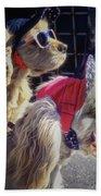 Salesdogs - Venice Beach Beach Towel by Samuel M Purvis III