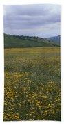 Salisbury Potrero - Sierra Madre Mountains Beach Towel