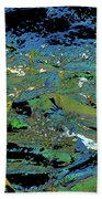 Salmon Run 4 Beach Towel