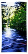 Salt Creek Falls Beach Towel