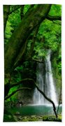 Salto Do Prego Waterfall Beach Towel