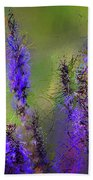 Salvia May Night Art -purple Modern Abstract Art Beach Towel